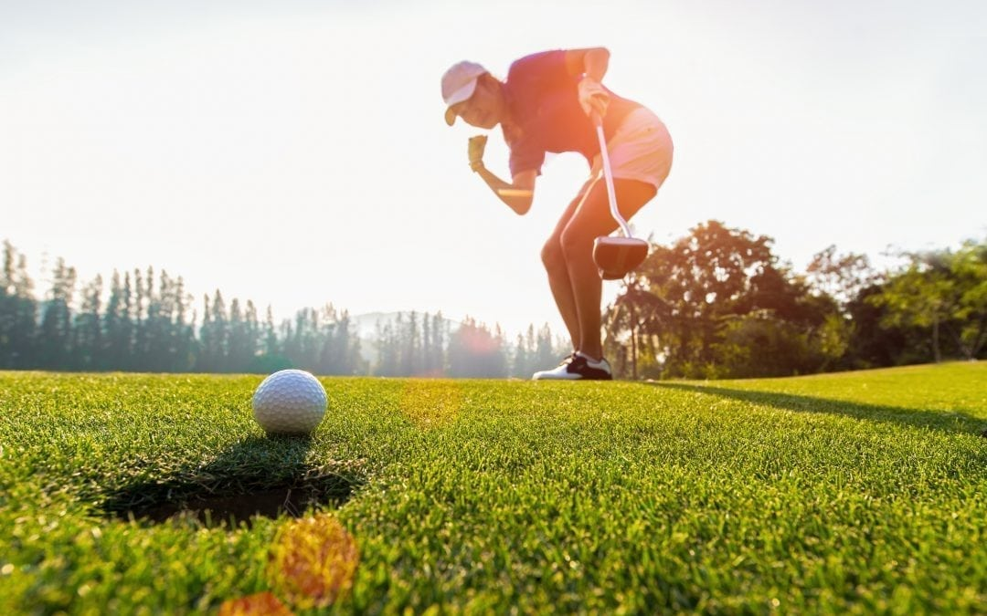 Can a pro golfer make a hole-in-one in 500 shots?
